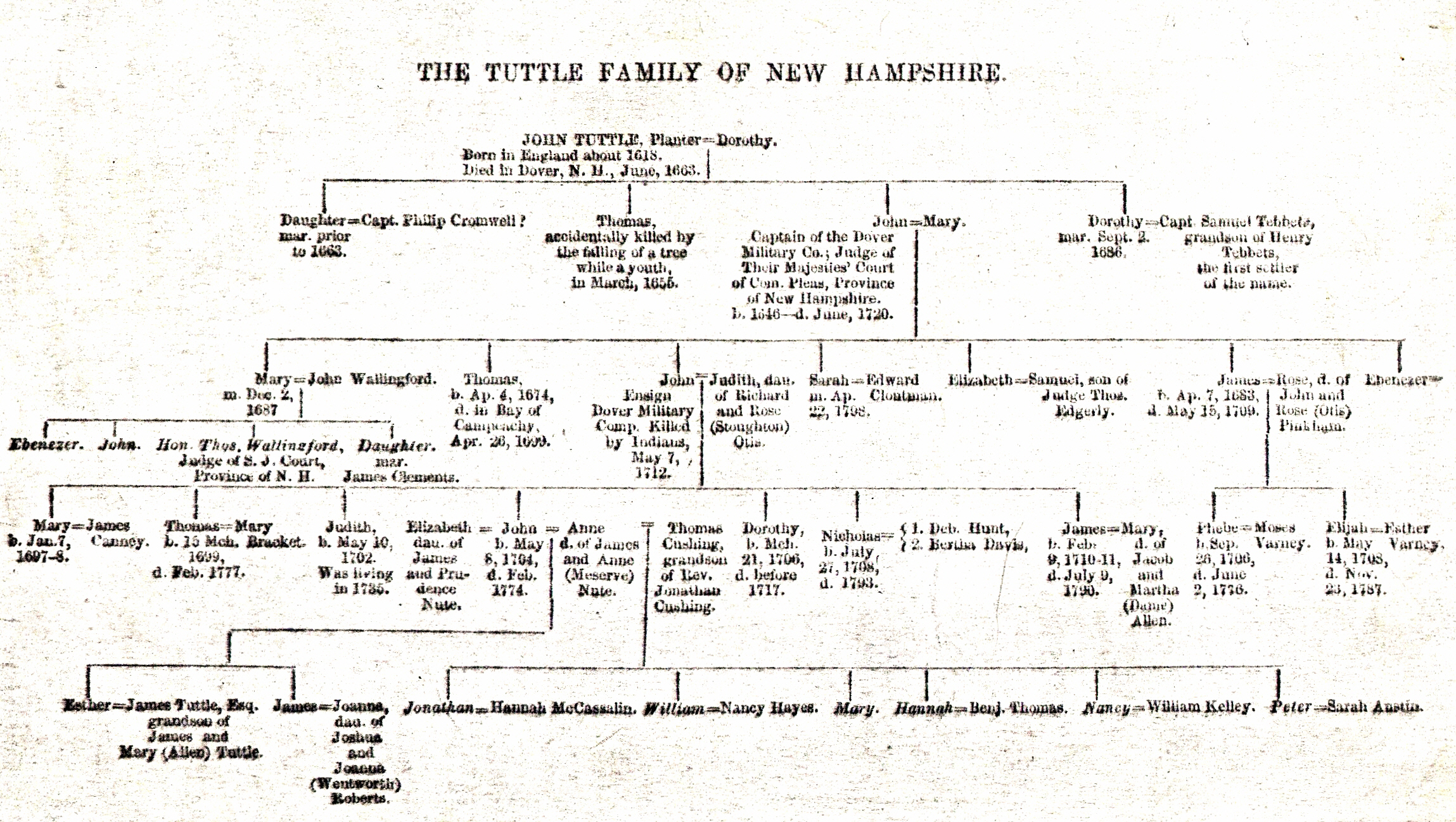 - tuttle-family-tree