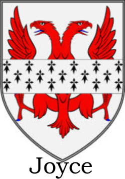 Immigrant Ancestor - Joyce Coat of Arms