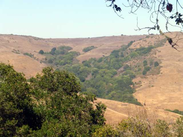 Havey Canyon from across the way