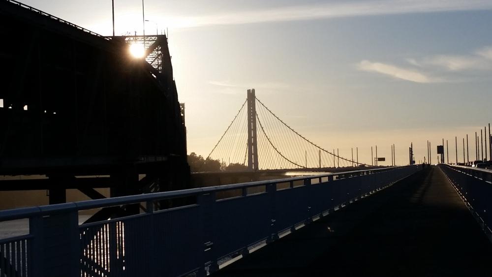 Bay Bridge Bike Trail (4/6)