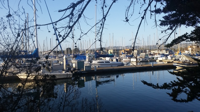 Berkeley Marina with  Houseboats